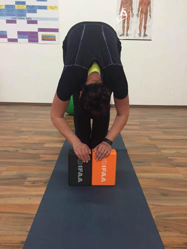 Yogakissen.jpg