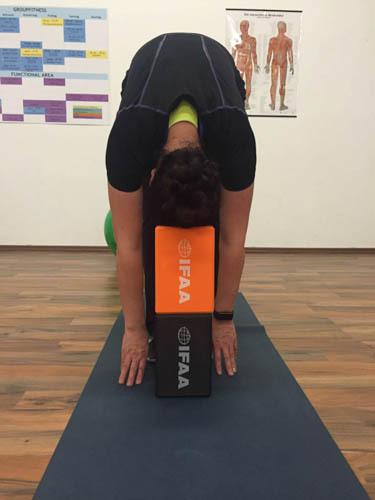 http://www.schrittmacherin.at/wp-content/uploads/2016/02/Yogakissen1-3.jpg